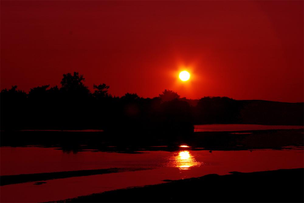 金黄色的夕照 - 紫寒燕雨 - 紫雨文学音画世界